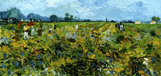 Vincent van Gogh, Il Vigneto verde, 1888, olio su tela, cm 72,2