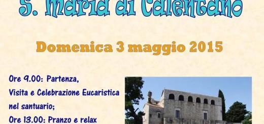 Locandina_Pelleginaggio
