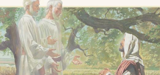 Trasfigurazione (2)