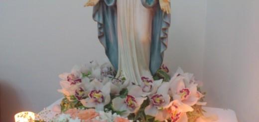 Madonna cenacoli (2)